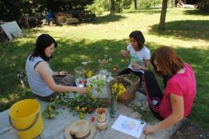Our gardening activities
