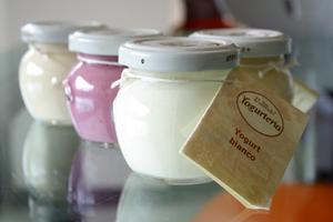 Lo yogurt di Vannulo